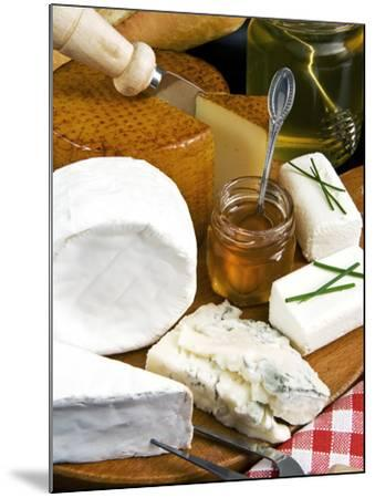 French Cheeses and Honey, France-Nico Tondini-Mounted Photographic Print