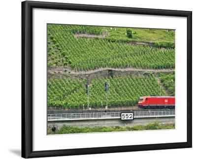 High Speed Train by Rhineland Vineyards, Koblenz, Germany-Miva Stock-Framed Photographic Print