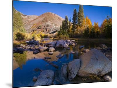 Sunrise at North Lake, Eastern Sierra Foothills, California, USA-Tom Norring-Mounted Photographic Print