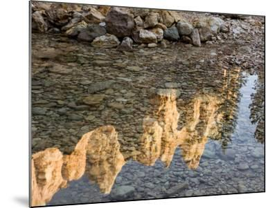 Peaks Reflecting in Small Pool at Mossy Cave at Bryce Canyon National Park, Utah, USA-Tom Norring-Mounted Photographic Print