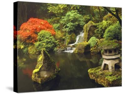 Portland Japanese Garden in Autumn, Portland, Oregon, USA-Michel Hersen-Stretched Canvas Print