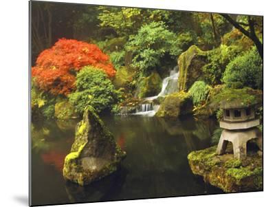 Portland Japanese Garden in Autumn, Portland, Oregon, USA-Michel Hersen-Mounted Photographic Print