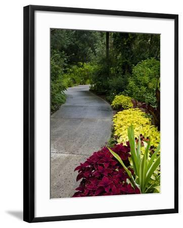 Harry P. Leu Gardens, Orlando, Florida, United States of America, North America-Michael DeFreitas-Framed Photographic Print