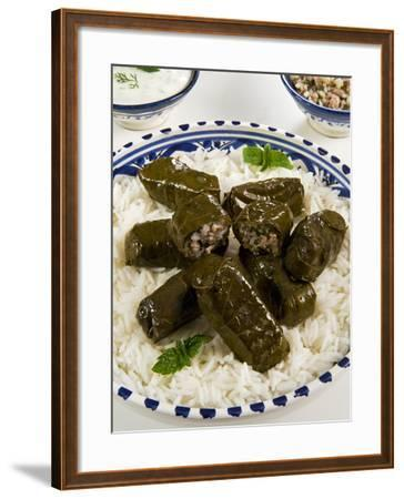 Dolma (Dolmades), Grape Leaves Stuffed with Meat and Rice, Turkey and Greece-Nico Tondini-Framed Photographic Print