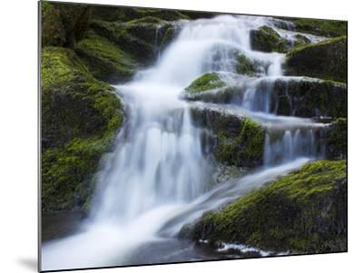 Waterfall, Glen Artney, Near Crieff, Perthshire, Scotland, United Kingdom, Europe-Jeremy Lightfoot-Mounted Photographic Print