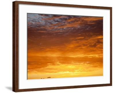 Red Sky at Sunrise over Atlantic Ocean, View from Miami Beach, Florida, USA, North America-Angelo Cavalli-Framed Photographic Print