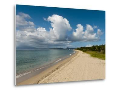 Pinney's Beach, Nevis, St. Kitts and Nevis, West Indies, Caribbean, Central America-Sergio Pitamitz-Metal Print