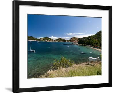 Le Bourg, Iles Des Saintes, Terre de Haut, Guadeloupe, French Caribbean, France, West Indies-Sergio Pitamitz-Framed Photographic Print