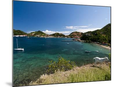 Le Bourg, Iles Des Saintes, Terre de Haut, Guadeloupe, French Caribbean, France, West Indies-Sergio Pitamitz-Mounted Photographic Print