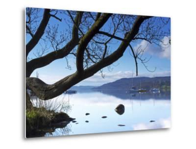 Sunrise, Ambleside, Lake Windermere, Lake District National Park, Cumbria, England, UK, Europe-Jeremy Lightfoot-Metal Print