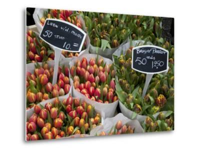 Tulips, Bloemenmarkt, Amsterdam, Holland, Europe-Frank Fell-Metal Print