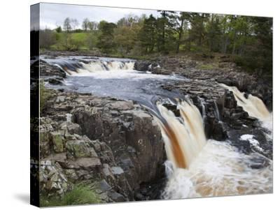 Low Force in Upper Teesdale, County Durham, England-Mark Sunderland-Stretched Canvas Print