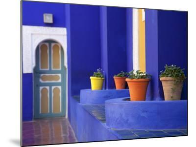 Majorelle Gardens, Marrakesh, Morocco, North Africa, Africa-Frank Fell-Mounted Photographic Print