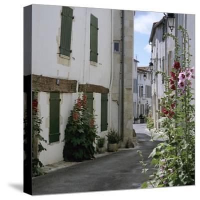 Typical Street Scene with Hollyhocks, St. Martin, Ile de Re, Poitou-Charentes, France, Europe-Stuart Black-Stretched Canvas Print
