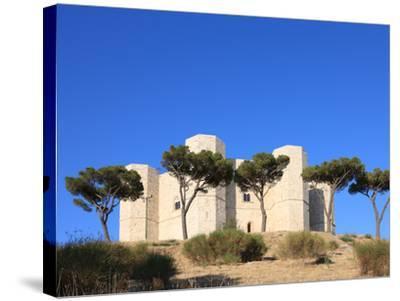 Castel del Monte (Federico II Castle), UNESCO World Heritage Site, Puglia, Italy, Europe-Vincenzo Lombardo-Stretched Canvas Print