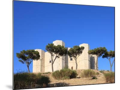 Castel del Monte (Federico II Castle), UNESCO World Heritage Site, Puglia, Italy, Europe-Vincenzo Lombardo-Mounted Photographic Print