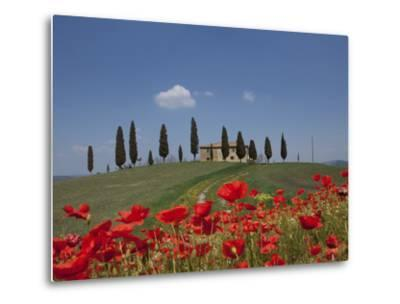 Country Home and Poppies, Near Pienza, Tuscany, Italy, Europe-Angelo Cavalli-Metal Print