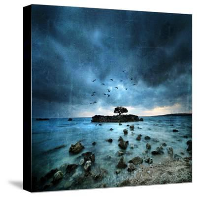 Misty Blue-Philippe Sainte-Laudy-Stretched Canvas Print