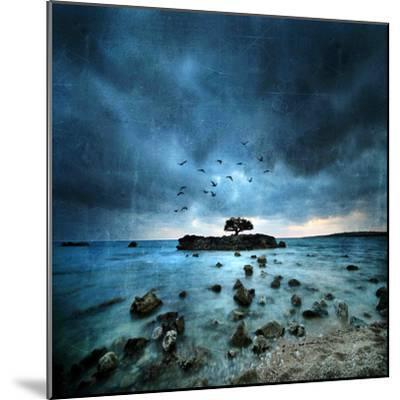 Misty Blue-Philippe Sainte-Laudy-Mounted Premium Photographic Print