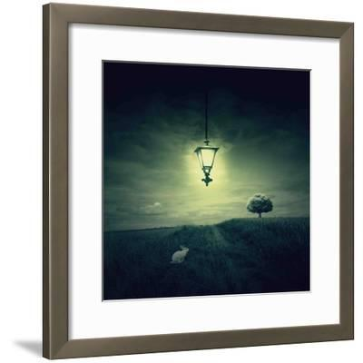Follow the White Rabbit-Philippe Sainte-Laudy-Framed Photographic Print