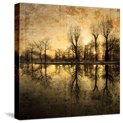 Down Deep into the Pain-Philippe Sainte-Laudy-Stretched Canvas Print