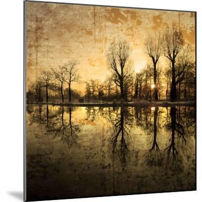Down Deep into the Pain-Philippe Sainte-Laudy-Mounted Photographic Print