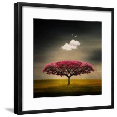 Medusa Cloud-Philippe Sainte-Laudy-Framed Premium Photographic Print