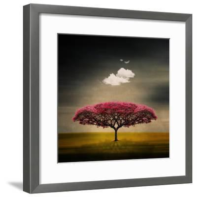 Medusa Cloud-Philippe Sainte-Laudy-Framed Photographic Print