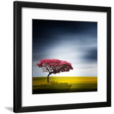 Medusa-Philippe Sainte-Laudy-Framed Photographic Print