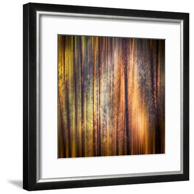 Autumn Walk-Ursula Abresch-Framed Photographic Print