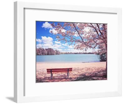 Vintage Moment-Philippe Sainte-Laudy-Framed Premium Photographic Print