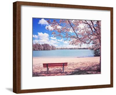 Vintage Moment-Philippe Sainte-Laudy-Framed Photographic Print