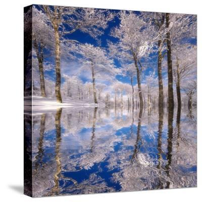 Dream in Blue-Philippe Sainte-Laudy-Stretched Canvas Print