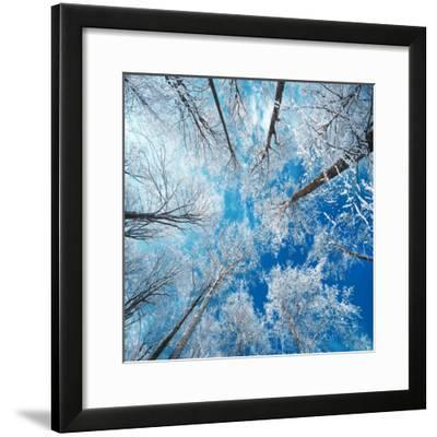 Frozen Sky-Philippe Sainte-Laudy-Framed Premium Photographic Print
