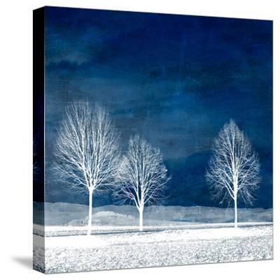 New World-Philippe Sainte-Laudy-Stretched Canvas Print