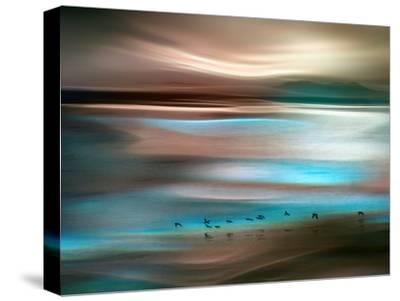 Migrations-Ursula Abresch-Stretched Canvas Print