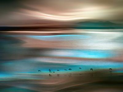 Migrations-Ursula Abresch-Premium Photographic Print