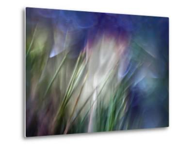 Needles-Ursula Abresch-Metal Print