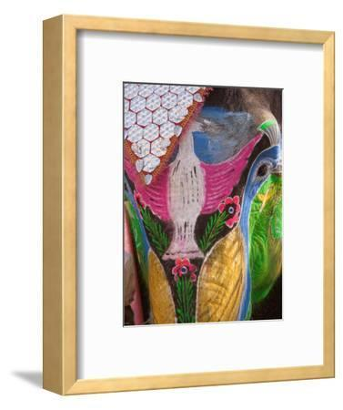 Festival of Colors II-Art Wolfe-Framed Photographic Print