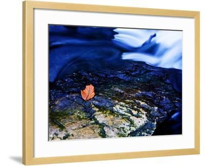 Blue-Doug Chinnery-Framed Photographic Print