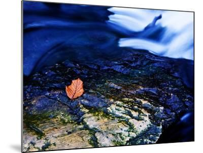 Blue-Doug Chinnery-Mounted Photographic Print