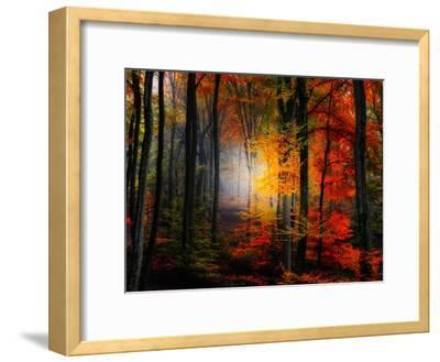 Light Colors-Philippe Sainte-Laudy-Framed Photographic Print