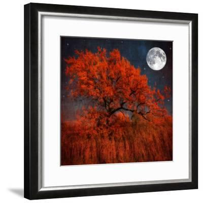 Halloween Color-Philippe Sainte-Laudy-Framed Photographic Print