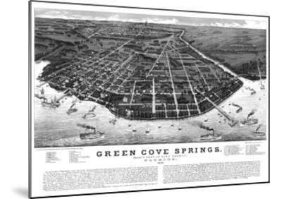 1885, Green Cove Springs Bird's Eye View, Florida, United States--Mounted Giclee Print
