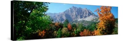 Pelens Needle in Autumn, French Riviera, Provence-Alpes-Cote D'Azur, France--Stretched Canvas Print