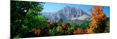 Pelens Needle in Autumn, French Riviera, Provence-Alpes-Cote D'Azur, France--Mounted Photographic Print