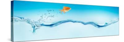 Goldfish Jumping Out of Water--Stretched Canvas Print