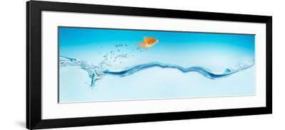 Goldfish Jumping Out of Water--Framed Photographic Print