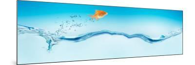 Goldfish Jumping Out of Water--Mounted Photographic Print