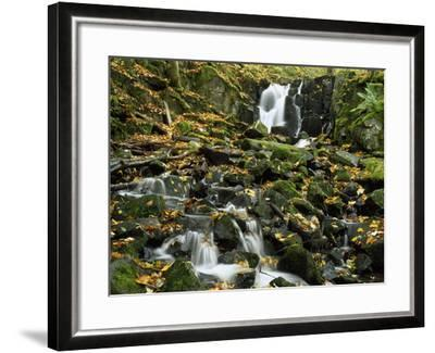 Small Waterfalls Cascading over Moss-Covered Rocks-Norbert Rosing-Framed Photographic Print